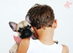 Crianças e animais de companhia - Laços fortes